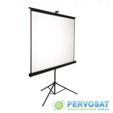 Проекционный экран AV Screen 3V100MTV