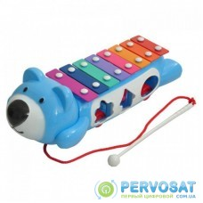 Развивающая игрушка BeBeLino Ксилофон-сортер на колесах (58021-2)